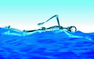 Swimming Skeleton wallpapers and stock photos