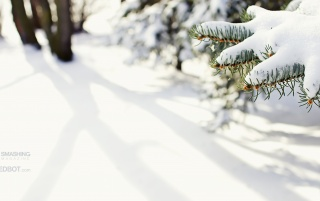 Snowy Love wallpapers and stock photos