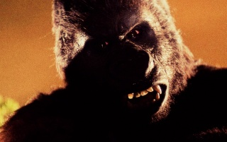 King Kong wallpapers and stock photos