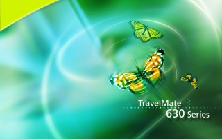Acer butterfly wallpapers and stock photos