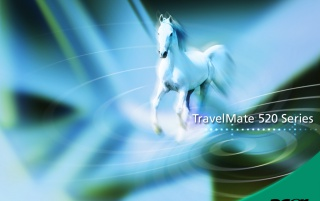 Acer horse wallpapers and stock photos