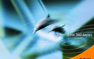 Acer dolphins wallpapers and stock photos