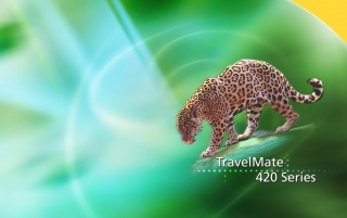 Acer leopard wallpapers and stock photos