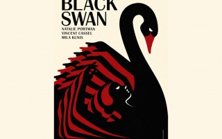 Black Swan wallpapers and stock photos