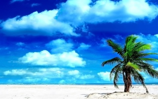 Paradise Island wallpapers and stock photos