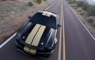 2006 Ford Shelby GT wallpapers and stock photos