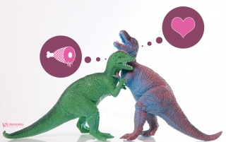Prehistoric Love wallpapers and stock photos