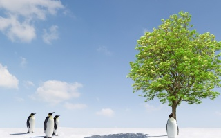 Next: Penguins and Green Tree