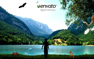 Digital harmony wallpapers and stock photos