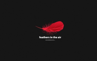 Feathers in the air wallpapers and stock photos