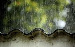 Rain on the Roof wallpapers and stock photos