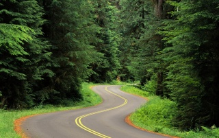 Winding road wallpapers and stock photos