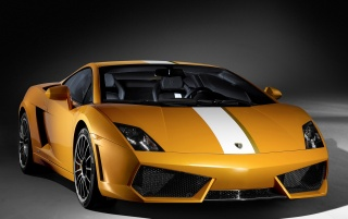 Previous: Beautiful Gallardo