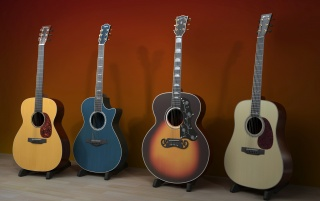 Next: Beautiful guitars