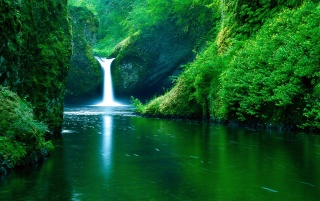 Next: Punch Bowl Falls