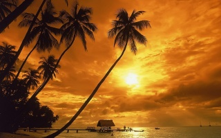Couche de soleil wallpapers and stock photos