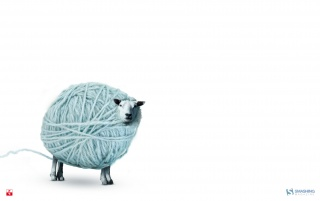 Silly sheep wallpapers and stock photos