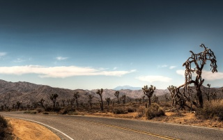 Carreteras wallpapers and stock photos