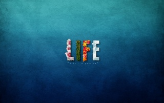 Life wallpapers and stock photos
