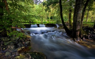 Vegetation and waterfall wallpapers and stock photos
