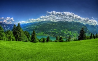 Green valley wallpapers and stock photos