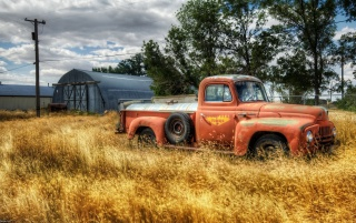 Random: Old rusted truck
