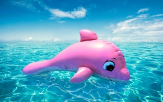 Pink Whale wallpapers and stock photos