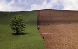 Spring Ploughing wallpapers and stock photos