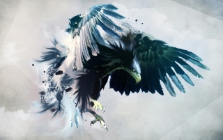 Digital Eagle wallpapers and stock photos