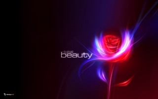 Digital Beauty wallpapers and stock photos