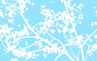 White branch on blue wallpapers and stock photos