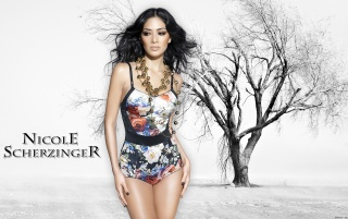 Nicole Scherzinger wallpapers and stock photos