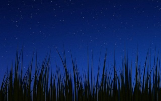 Android 3.0 night wallpaper wallpapers and stock photos