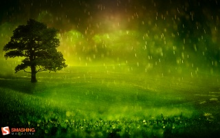 Greeny Droplets wallpapers and stock photos