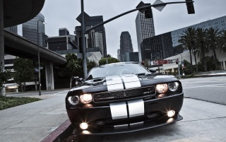 Dodge Challenger SRT8 392 Front View wallpapers and stock photos