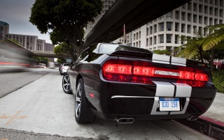 Dodge Challenger SRT8 392 Rear Angle wallpapers and stock photos