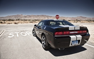 Dodge Challenger SRT8 392 Rear Angle on the Road wallpapers and stock photos