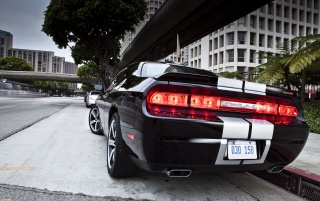 Dodge Challenger SRT8 392 Rear Angle City wallpapers and stock photos