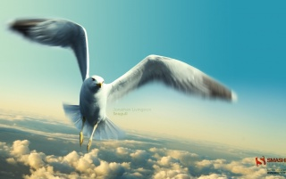 Previous: Jonathan Livingston Seagull