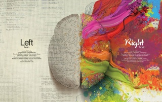 Left brain and right brain wallpapers and stock photos