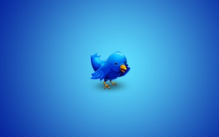 Twitter aves wallpapers and stock photos