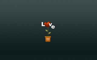 Love flower wallpapers and stock photos