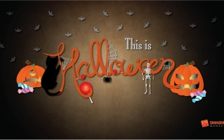 This is Halloween wallpapers and stock photos