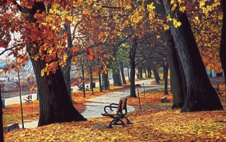 Autumn retreat wallpapers and stock photos