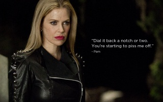 True Blood Season 4 Pam wallpapers and stock photos