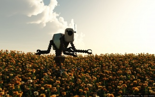 Field of Robot wallpapers and stock photos