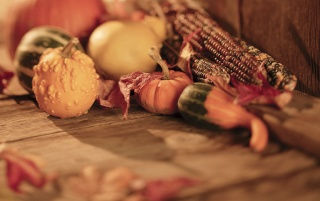 Thanksgiving Day wallpapers and stock photos