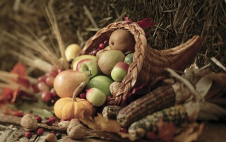 Thanksgiving 2011 wallpapers and stock photos