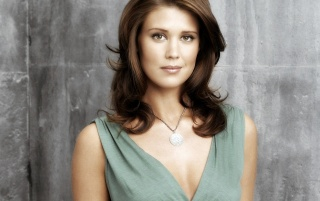 Sarah Lancaster Gorgeous wallpapers and stock photos