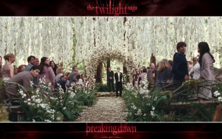 Breaking Dawn: Wedding Party wallpapers and stock photos